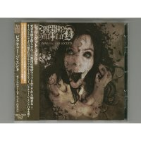 They Swarmed Like Locusts / Picture The End [Used CD] [w/obi]
