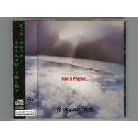 Point Of Pride For... / Vagerke [Used CD] [w/obi]