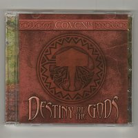 Destiny Of The Gods / Coven 13 [Used CD] [Import]