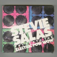 Electric Pow Wow / Stevie Salas [Used CD] [1st Press]