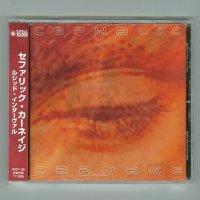 Lucid Interval / Cephalic Carnage [Used CD] [w/obi]